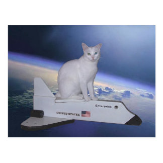 Astronaut Cat (Spirit) on Space Shuttle Postcard