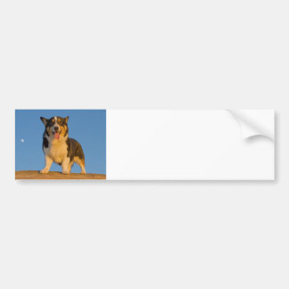 Astronaut Dreaming Bumper Sticker