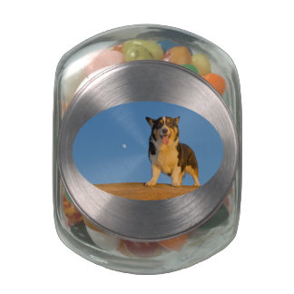 Astronaut Dreaming Jelly Belly Candy Jars