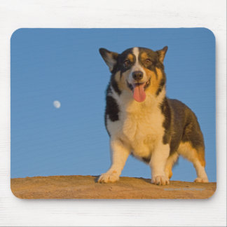 Astronaut Dreaming Mouse Pad