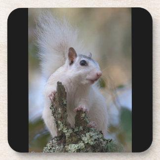 Astronaut Squirrel Beverage Coasters