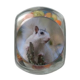 Astronaut Squirrel Glass Jar