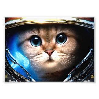 Astronauta del gato cojinete