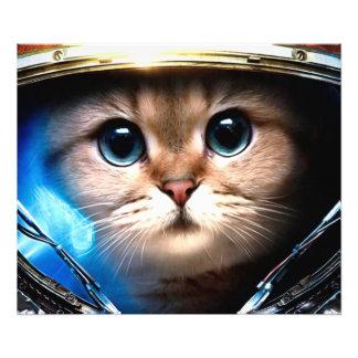 Astronauta del gato fotografía