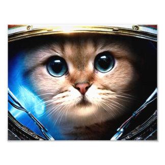 Astronauta del gato fotografías