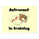 Astronauta del oso en camisetas y regalos del entr tarjeta postal