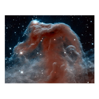 Astronomía de espacio de la nebulosa de Horsehead Tarjetas Postales