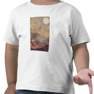 Astronomical Observations 2 Tees