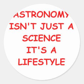 astronomy joke classic round sticker