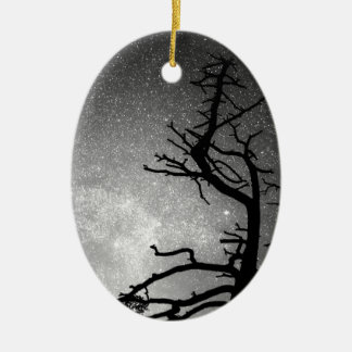 Astrophotography Night Black and White Portrait Double-Sided Oval Ceramic Christmas Ornament