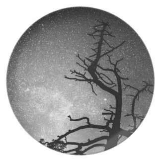 Astrophotography Night Black and White Portrait Plate