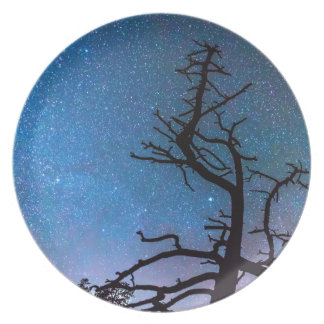 Astrophotography Night Dinner Plate