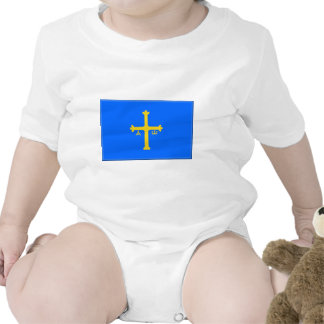 Asturias (Spain) Flag Baby Creeper
