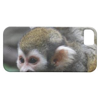 Asunto de familia del mono de ardilla iPhone 5 Case-Mate carcasas