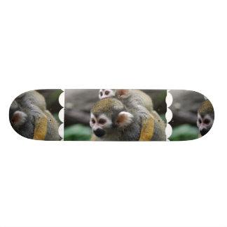 Asunto de familia del mono de ardilla patin