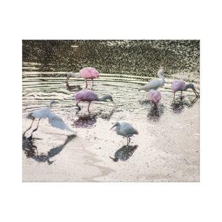 Asunto emplumado rosa impresiones en lienzo estiradas