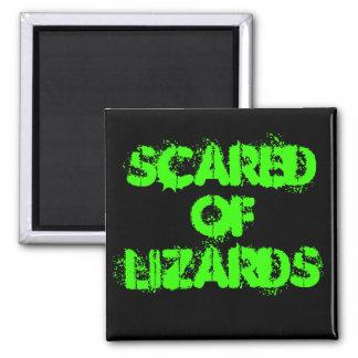 Asustado de lagartos imán