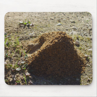 Asymmetrical Ant House Mount Mouse Pad