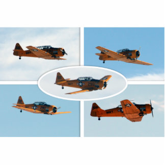 AT-6 Texan WWII  War Plane Photo Cut Outs