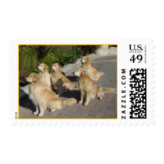 At Attention Postage
