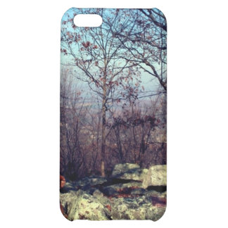 AT CASE FOR iPhone 5C