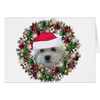 At Christmas - Havanese Card
