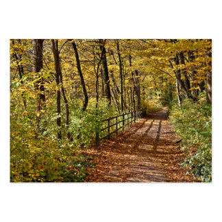 At Fall In Wienerwald Large Business Card