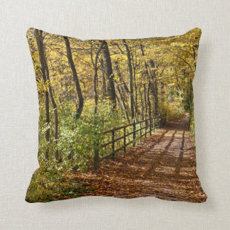 At Fall In Wienerwald Pillow