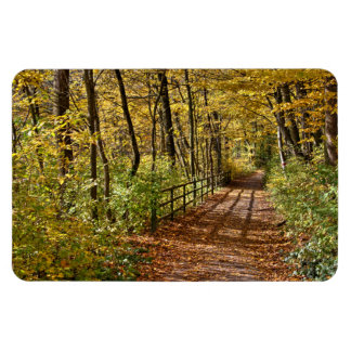 At Fall In Wienerwald Rectangular Photo Magnet