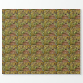 At Fall In Wienerwald Wrapping Paper