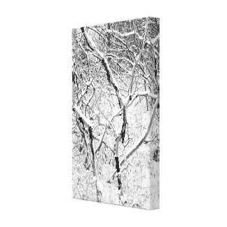 at home in snow gallery wrap canvas