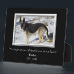 """At Our Side Silver Frame Pet Memorial Template<br><div class=""""desc"""">A dramatic solid black background is the setting for your pet&#39;s photograph within a pretty silver colored frame. The text is also in silver, with three fields for you to customize. We chose &quot;No longer at our side but always in our hearts&quot; for the tribute for our beloved Tasha, but...</div>"""