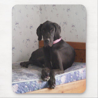 At Rest - Great Dane Mouse Pad