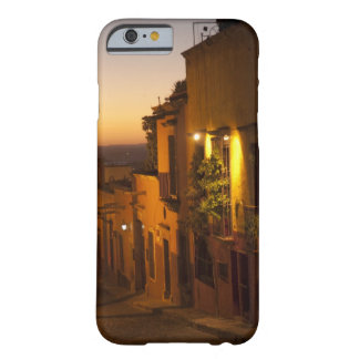 At sunset. barely there iPhone 6 case