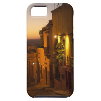 At sunset. iPhone SE/5/5s case