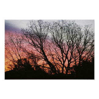At Sunset Photographic Poster
