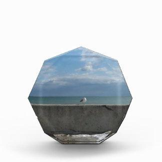 AT THE BEACH AWARD
