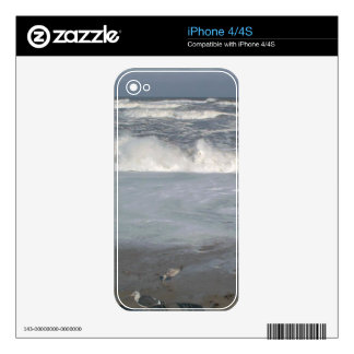 At the Beach Decal For The iPhone 4