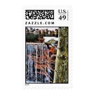 At The Falls Stamp