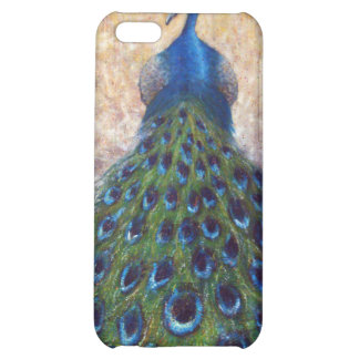 At the Gates iPhone 5C Covers
