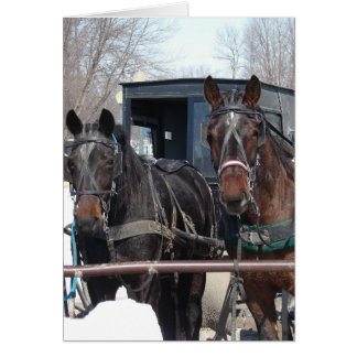 At the Hitching Post Card
