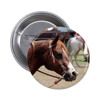At the Horse Show Pinback Button