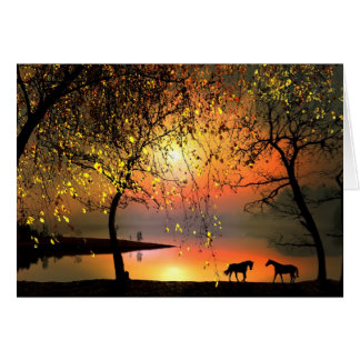 At the sunset card