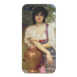 At the Well iPhone 5 Cases