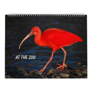 At the zoo calendar