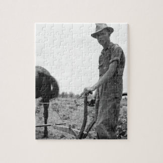 At Work in the Cotton Jigsaw Puzzle