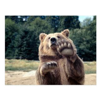 ¡Ataque del oso! Postal