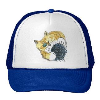 Ataque observado del hilado del gatito uno del tig gorras