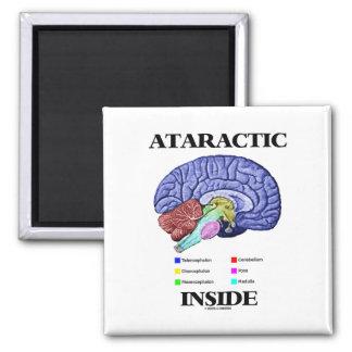Ataractic Inside Brain Anatomy Humor Magnets