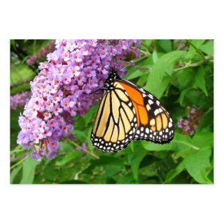 ATC bonito del del monarca Plantilla De Tarjeta De Visita
